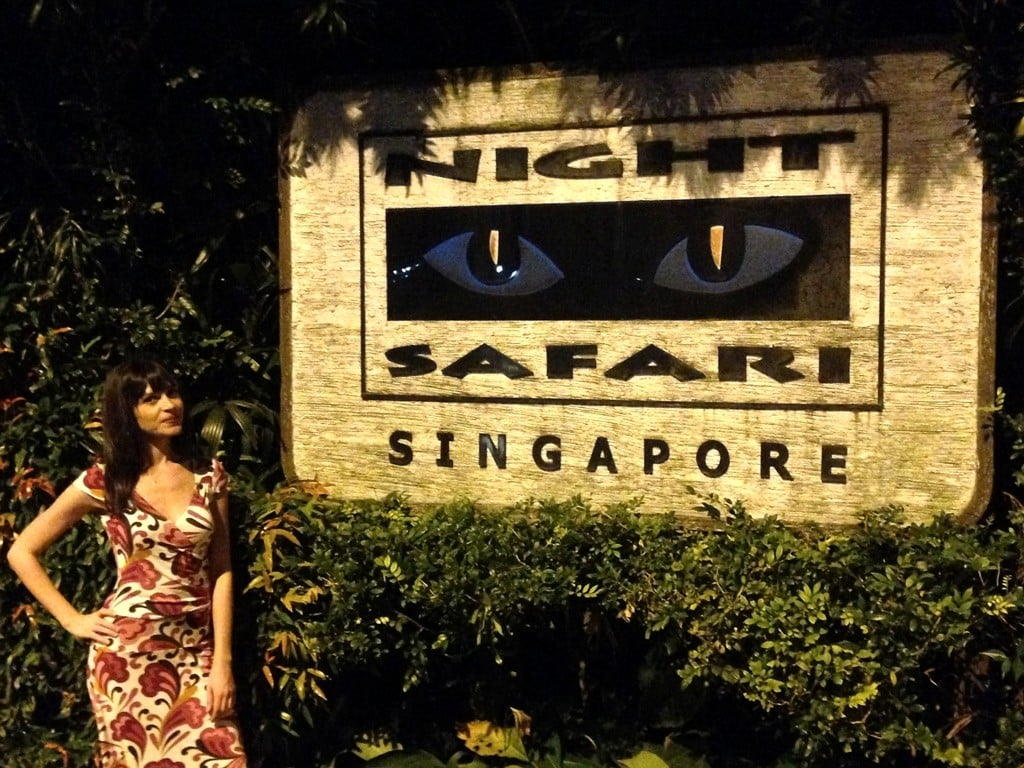 singapur gece safarisi
