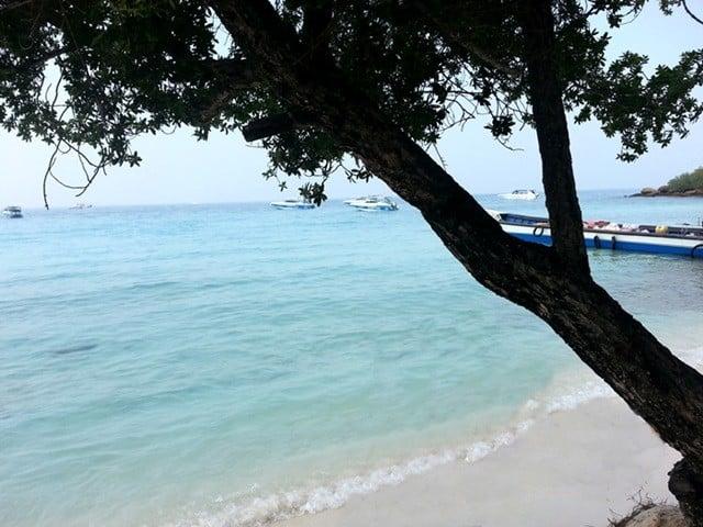 Pattaya'ya gitmişken Mercan Adası'na uğramak şart..
