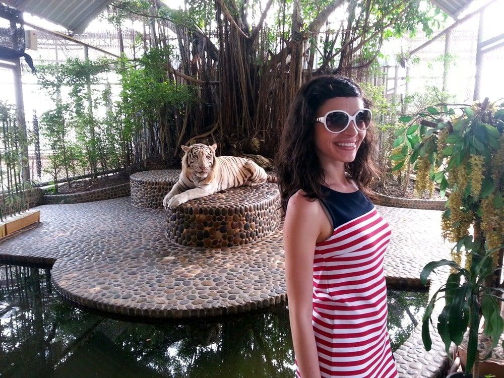 Krokodil Parkı'nda vahşi hayvanlarla resim çekilebilirsiniz, ben anca bu kadar yaklaşabildim.