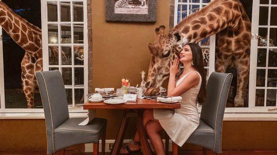 Afrika'da Sıra Dışı Deneyim: Kenya Zürafa Otel