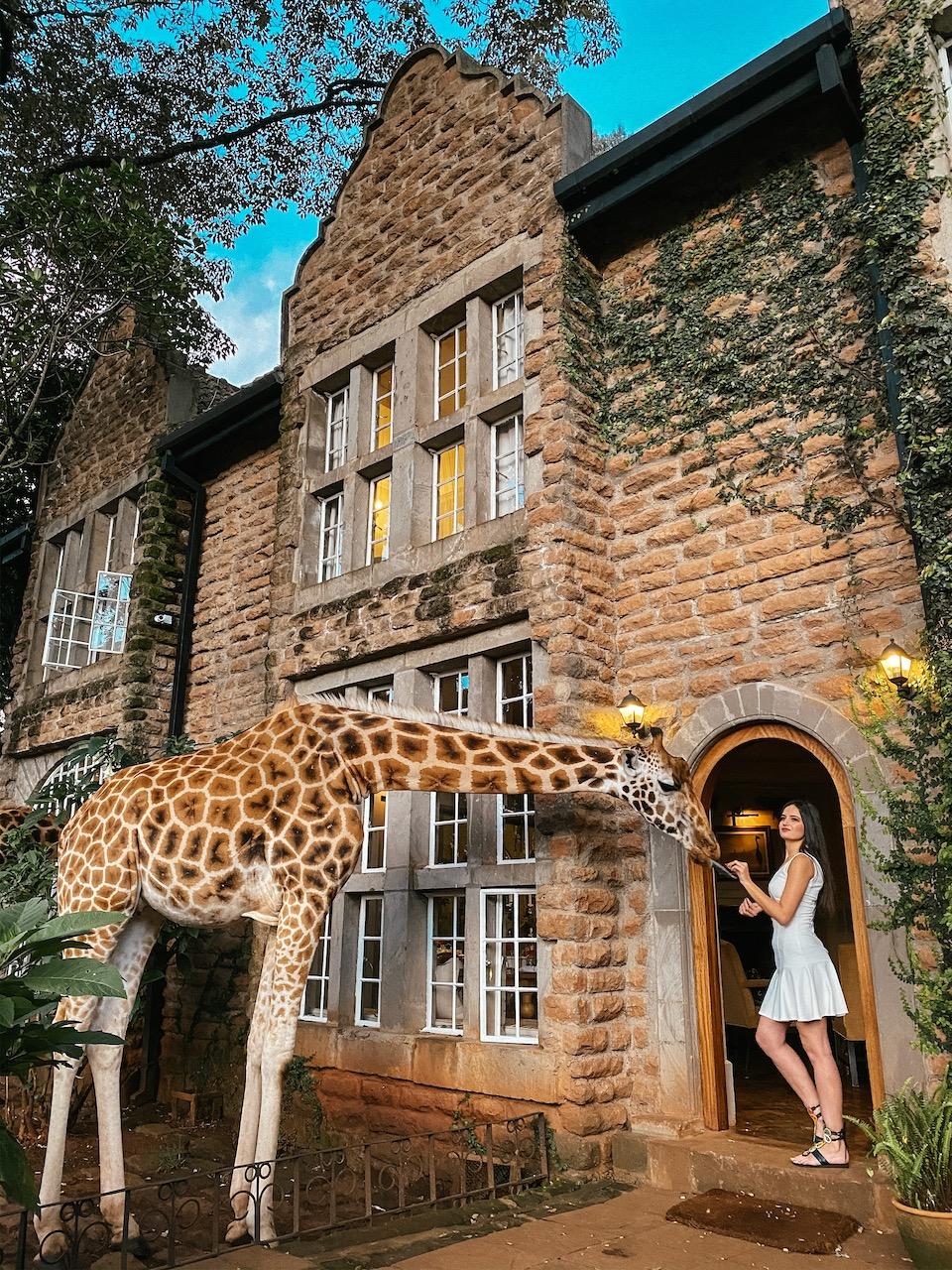 kenya zürafa otel